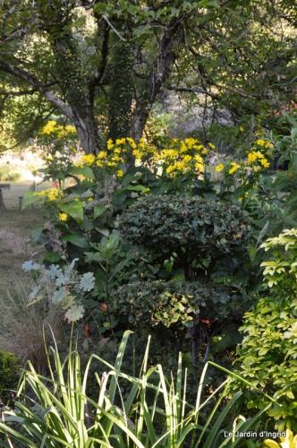 mon coin,Monique,les oies,mon jardin 034.JPG