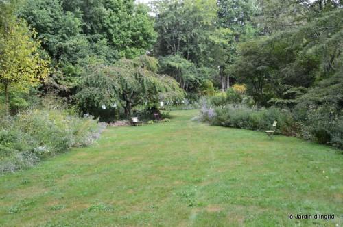asters,bouquets,jardin de Lilianne 025.JPG