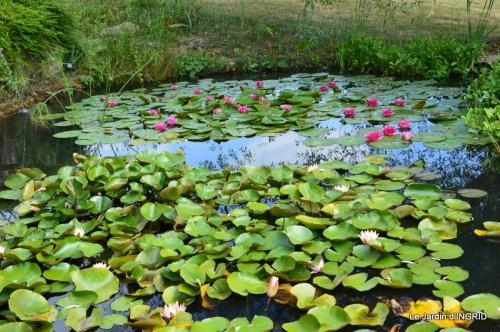 les jardins d'eau de Carsac 068.JPG