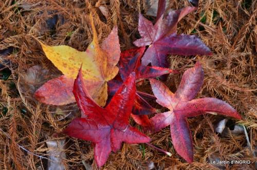 Romefort,bord de Creuse,vent,feuilles,jardin,canal 172.JPG