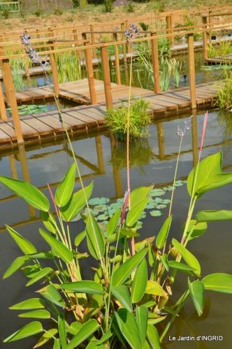 les jardins d'eau de Carsac 129.JPG