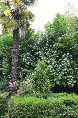 maison,jardin Bernadette,et jardin Claudine 111.JPG