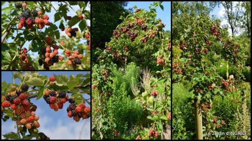 2014-07-07 tableau,jardin,centre de table,les bégos,Cadouin,DALY,Mouleydier3.jpg