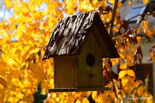 les arbres en automne,cabane 104.JPG