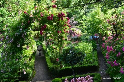 jardin pluie,Inès,Bébés cygnes,bouquet,canal 078.JPG