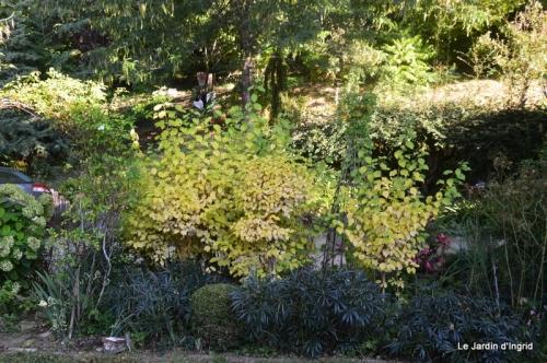 mon coin,Monique,les oies,mon jardin 058.JPG