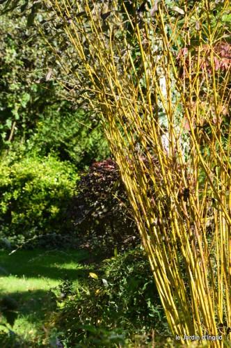 jardin octobre,chez Marylaur,Arnaud ,Ariane,la mer,sauges 214.JPG