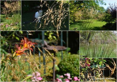 2016-07-11 jardin,papillons,Cadouin,légumes,Sophie,1.jpg