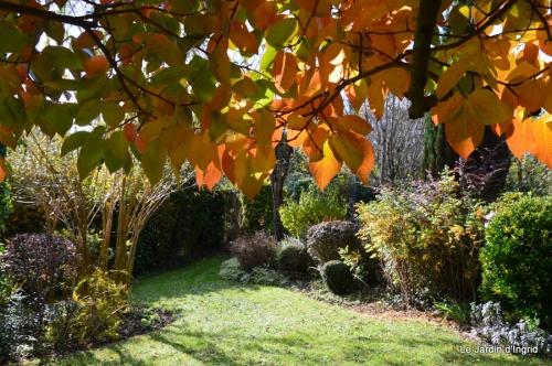 anniversaire Mamy,chateau d'eau,jardin automne 088.JPG