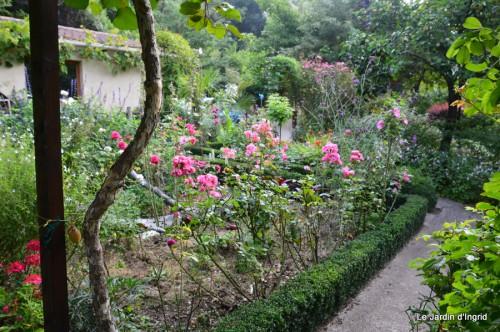tournesols,pt jardin,nénuphard,libellules,lavande bouquet,carava 035.JPG