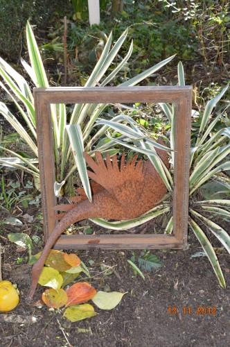 le cadre,,le kaki,les poules d'eau 036.JPG