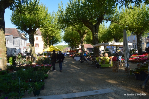 coquelicots,fête des fleurs Lalinde,fouleix,jardinage 041.JPG