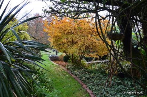 travaux,érable rouge,abeilles,Monpazier,jardin 017.JPG