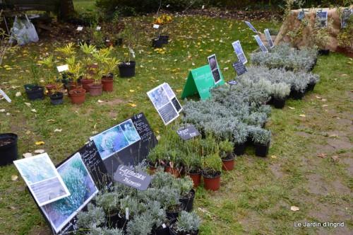 jardin,St Avit Seigneur brocante,Neuvic fête des plantes 092.JPG