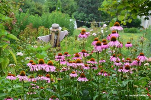 jardin,papillons,Cadouin,légumes,Sophie, 207.jpg