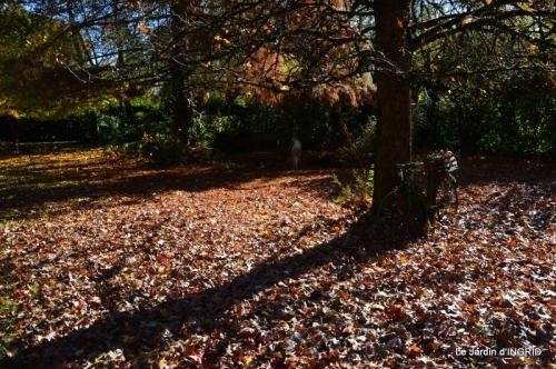 Romefort,bord de Creuse,vent,feuilles,jardin,canal 100.JPG