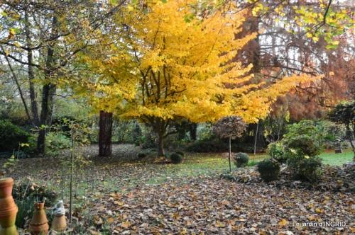 canal,automne,tonte des feuilles 064.JPG