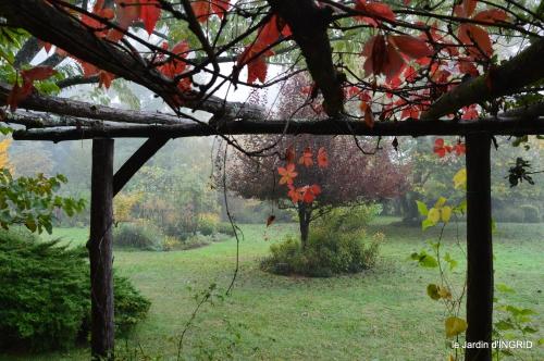 brouillard le matin d'automne 055.JPG
