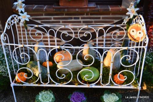 vide jardin,citrouilles,derriere cabane,papillon 062.JPG