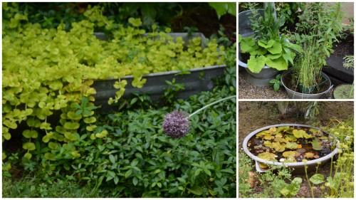 2013-06-18 les décos au jardin2.jpg