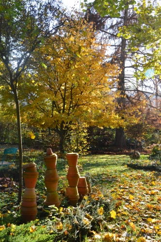 canal,jardin,Mombazillac,bonzais,orchidées 227.JPG