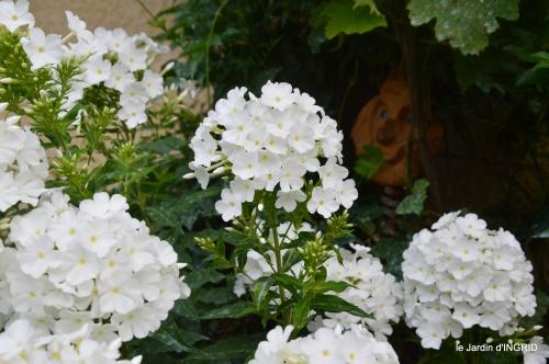 Ines,jardin,lagestromia,brocante Lalinde 131.JPG