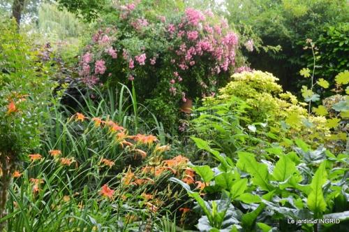 hémérocalles,Doprdogne,canal,bouquet fruit,jardin 039-001.JPG