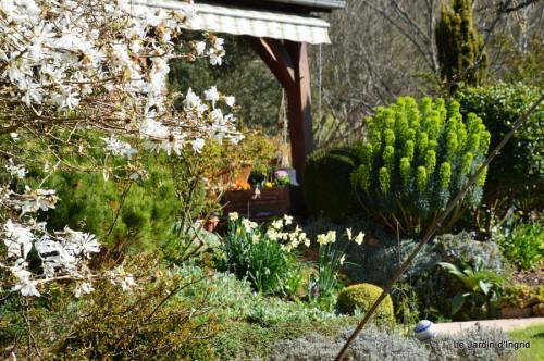 tour du jardin printemps 026.JPG