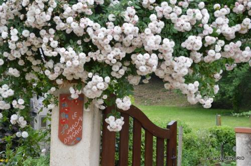 roses,marguerites,MOI,fêtes des mères avec les enfants 080.JPG