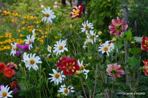 confiture,bouquet,petit jardin 042.JPG