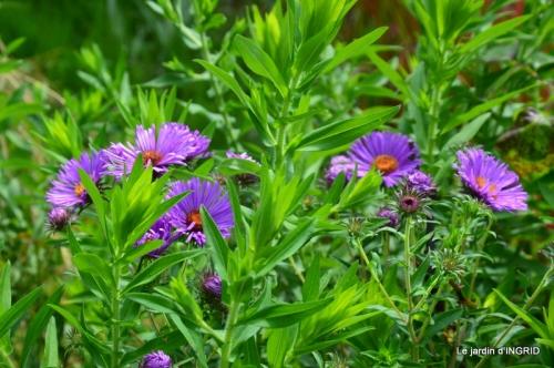 juin jardin,bouquet,sophie 020.JPG