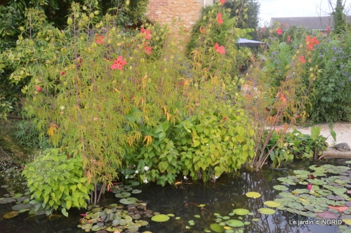 orage,puces,bouquet,Anniv.Ines,Brantome,Jardins d'eau 324.JPG