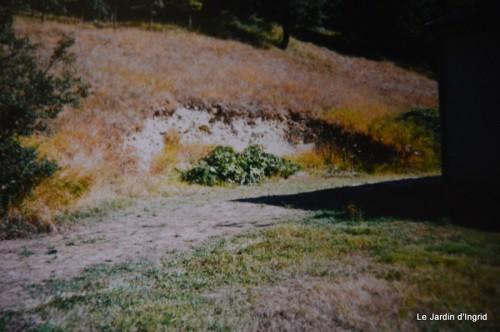 jardin,le cypres chauve,puces Mouleydier,vieilles photos 131.JPG