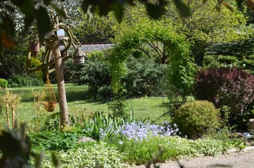 iris,arbre de judée,pivoine,Arya,viburnum,pts plants,cytise,akéb 122.JPG
