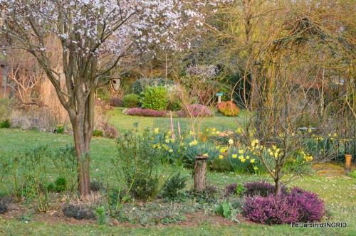 semis,taille,tonte,tour du jardin 058.JPG
