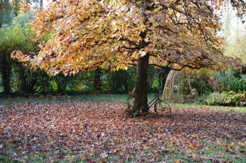 troncs,automne,vieilles photos 032.JPG