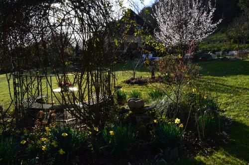 anniversaire Brigitte,fête de l'arbre Montignac,jardin 004.JPG