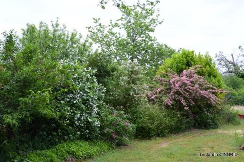 maison,jardin Bernadette,et jardin Claudine 027.JPG