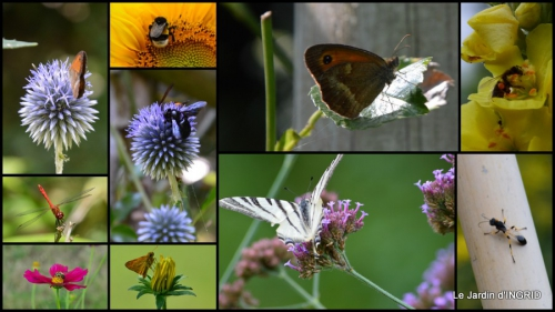 2014-07-28 jardin,butineurs,Meyrals,tableau mongolfière11.jpg