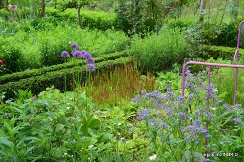 roses,jardin,Le Fleix,bleu 051.JPG