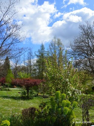 herons,fête des fleurs Bergerac,tulipes,jardin 011.JPG