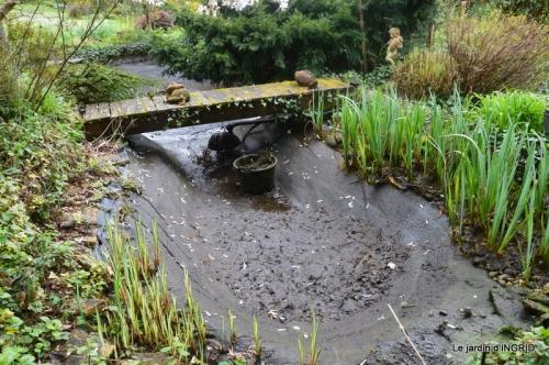 semis,bassin,tour du jardin 085.JPG