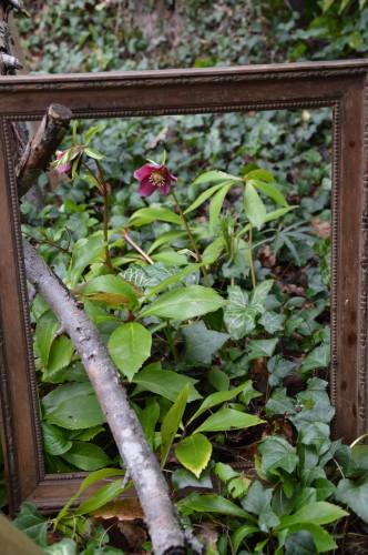chez Maryse,pour tableaux,jardin 2013 043.JPG