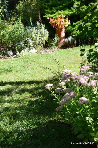 jardin ,bouquet 022.JPG