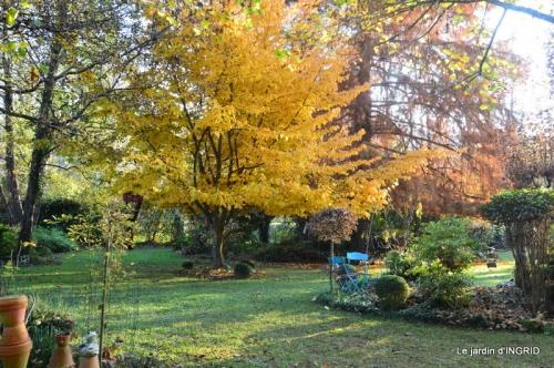 canal,automne,tonte des feuilles 088.JPG
