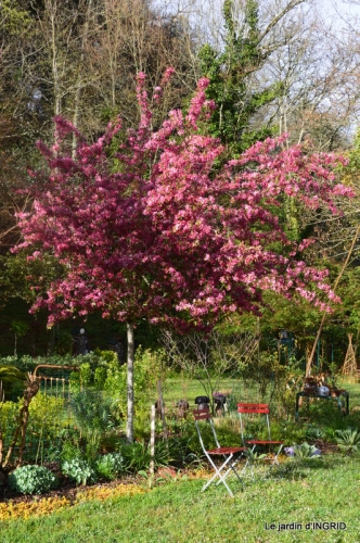 printemps,lilas,tontine 043-001.JPG
