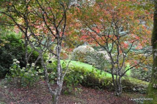 la Sedelle,étang de Riault,cyclamens 106-001.jpg