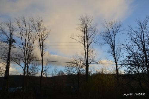 hiver au jardin,broyage 062.JPG
