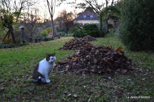 jardin, feuilles,sauges,gloriette,land art 149.JPG