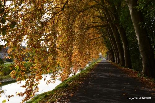 canal automne ,jardin,Ines 133.jpg